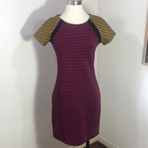 Lucca Couture Contrast Striped Sheath